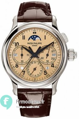 Replique Patek Philippe Gret Complications Perpetual Split-Seconds 5372P-010